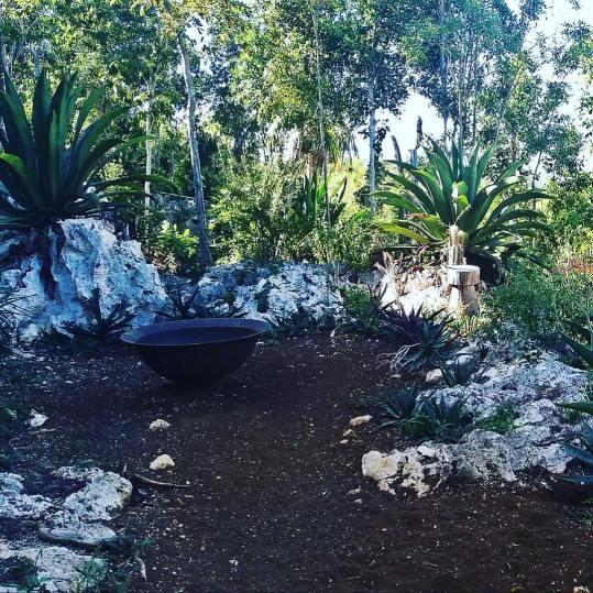 jamadda.jamaica_12950294_103296460079751_228366105_n