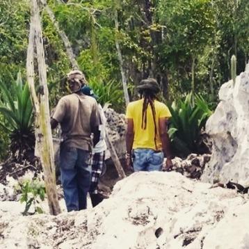 jamadda.jamaica_13092295_916453211821710_1652600147_n